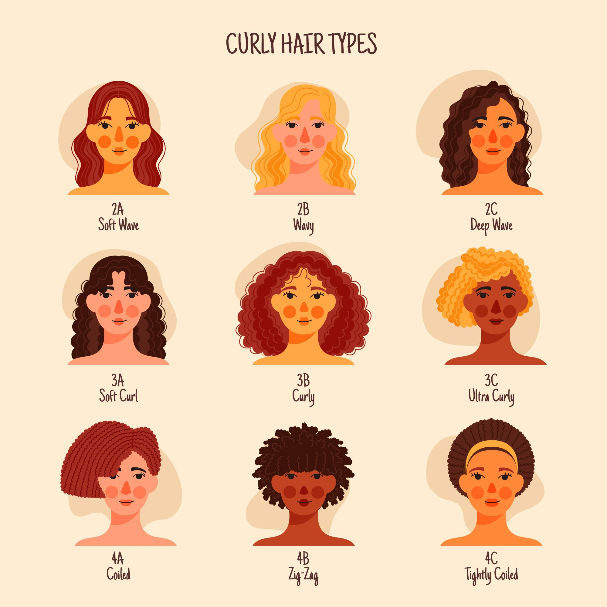 You are currently viewing TYPES OF CURLY HAIR